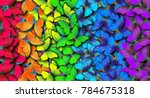 Stock photo colors of rainbow pattern of multicolored butterflies morpho texture background 784675318