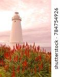 kangaroo island  south... | Shutterstock . vector #784754926