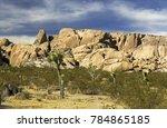 scenic sonora desert landscape... | Shutterstock . vector #784865185
