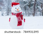 Close Up View Of Snowman In...