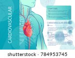 illustration of the human... | Shutterstock .eps vector #784953745