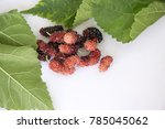 mulberry and leaves on white... | Shutterstock . vector #785045062