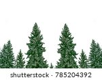 the branches of the snow...   Shutterstock . vector #785204392