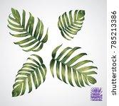 tropical leaf. vector green... | Shutterstock .eps vector #785213386