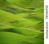 rolling green hills in spring... | Shutterstock . vector #78530950