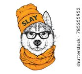 husky in a stylish hat  scarf... | Shutterstock .eps vector #785355952