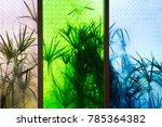 wood window with tree shadow   Shutterstock . vector #785364382