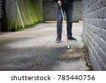 blind man walking near wall... | Shutterstock . vector #785440756