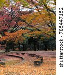 Small photo of Empty park with autumn foliage and leaves all around.