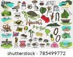 hawaii   tropical island... | Shutterstock .eps vector #785499772