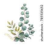 watercolor hand painted bouquet ... | Shutterstock . vector #785535652