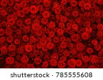 Stock photo natural red roses background flowers wall 785555608