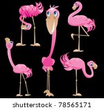 Flamingos Cartoons