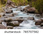 mountain river in tongariro... | Shutterstock . vector #785707582