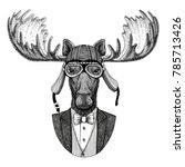 moose  elk animal wearing...   Shutterstock . vector #785713426