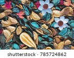 beautiful and colorful... | Shutterstock . vector #785724862