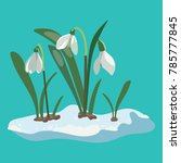 cartoon snowdrop. illustration... | Shutterstock .eps vector #785777845