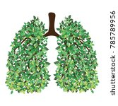 human lungs. respiratory system.... | Shutterstock .eps vector #785789956