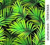 tropical palm leaves  jungle... | Shutterstock .eps vector #785845666