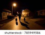 Stock photo silhouette of man walking with his dogs 785949586