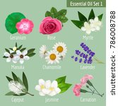 essential oil set. realistic... | Shutterstock .eps vector #786008788