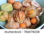 Close Up Cape Gooseberry