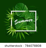 exotic tropical leaf background ... | Shutterstock .eps vector #786078808
