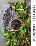 superfood maqui berry.... | Shutterstock . vector #786118252