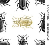 gold darkling beetle background.... | Shutterstock .eps vector #786329776