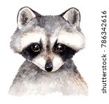Stock photo cute baby raccoon watercolor illustration hand drawn forest animal portrait 786342616