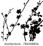 peach or cherry blossom flowers ...   Shutterstock .eps vector #786348826