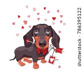 card of a valentine's day.... | Shutterstock .eps vector #786395122