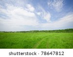 green pasture in the summer, the cows graze on the horizon - stock photo