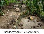 african spurred tortoise... | Shutterstock . vector #786490072