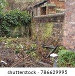 neglected garden and...   Shutterstock . vector #786629995
