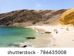 paracas  ica  peru  view of la... | Shutterstock . vector #786635008