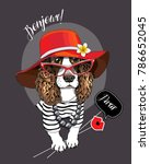 spaniel dog in a striped... | Shutterstock .eps vector #786652045