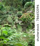 Small photo of Nirvana Asia Temple Lush Green Garden