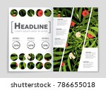 abstract vector layout... | Shutterstock .eps vector #786655018
