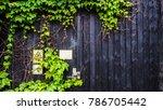 beautiful wooden doorway... | Shutterstock . vector #786705442