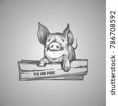 sketch of pig. engraved pig and ... | Shutterstock .eps vector #786708592