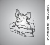 Sketch Of Pig. Engraved Pig An...