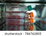 cell culture flasks in the... | Shutterstock . vector #786762805