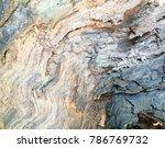 old wood texture bark texture... | Shutterstock . vector #786769732