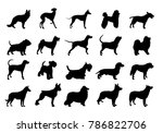 Stock vector collection of dogs silhouette silhouette of the dog illustration with set of dogs isolated on white 786822706