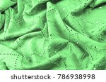 texture  pattern. cloth green... | Shutterstock . vector #786938998