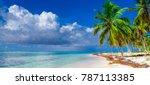 paradise of white sand beach of ... | Shutterstock . vector #787113385