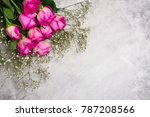 beautiful pink and yellow roses ... | Shutterstock . vector #787208566