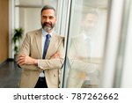 portrait of senior businessman... | Shutterstock . vector #787262662