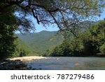 mountain creek. pure water.... | Shutterstock . vector #787279486